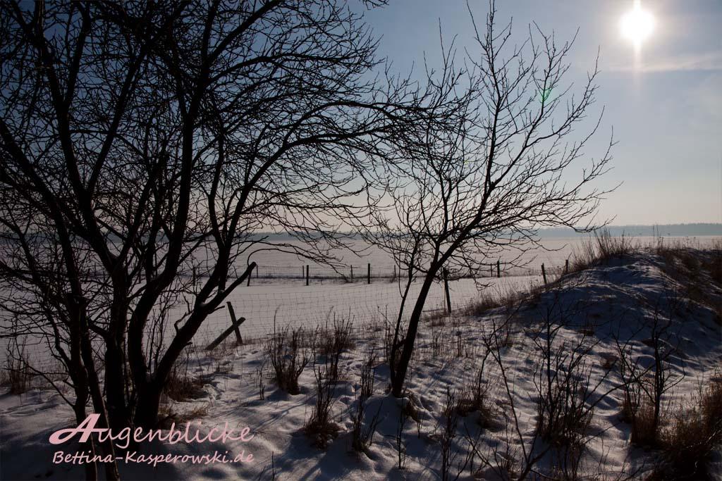 Ein Sonnenstrahl auf gefrorenem Eis